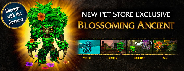 blossoming-ancient-pet-banner
